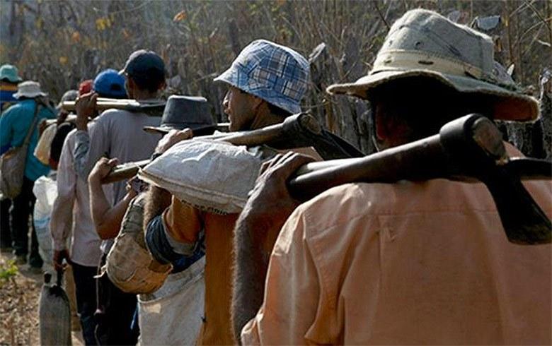 TRABALHO ESCRAVO: 'Lista suja' tem 204 empregadores com 2.500 pessoas em situação de escravidão